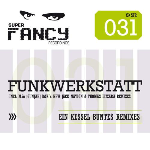 Funkwerkstatt - Flashmatic (Thomas Lizzara Remix)