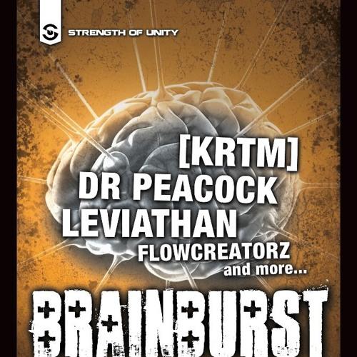 Flowcreatorz @ Brainburst ADE Special 19-10-2012 (vinyl set)