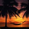 zone - island of dreams