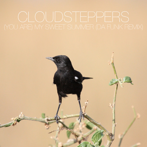 Cloudsteppers-(You Are) My Sweet Summer (Da Funk Remix)