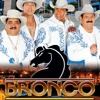 【♥】Bronco 【♥】Adoro