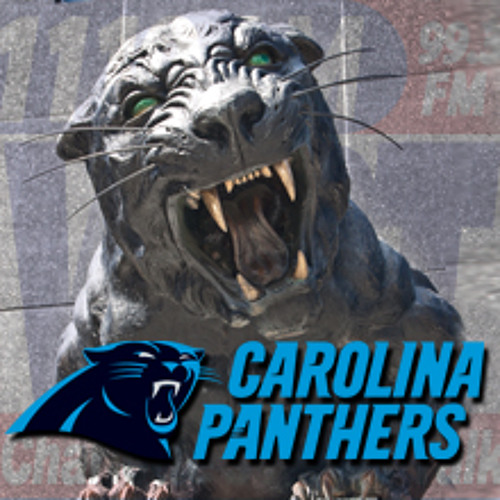 Panther Highlights: Aug. 9th (Bears)