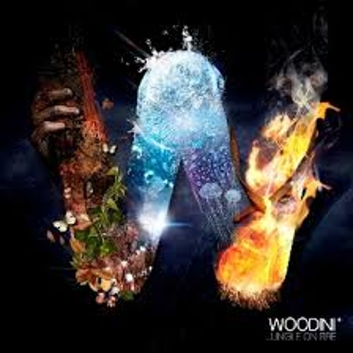 Woodini - Jungle On Fire (Fybe:one Remix)