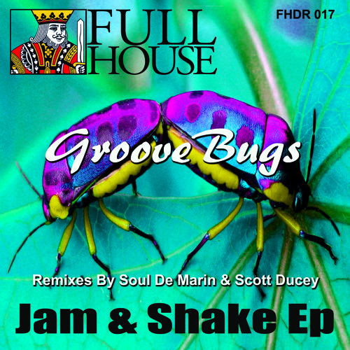 Groove Bugs - Shake & Rock (Scott Ducey Remix) - Preview Clip