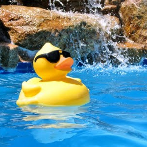 Rubber Ducky Pool Party