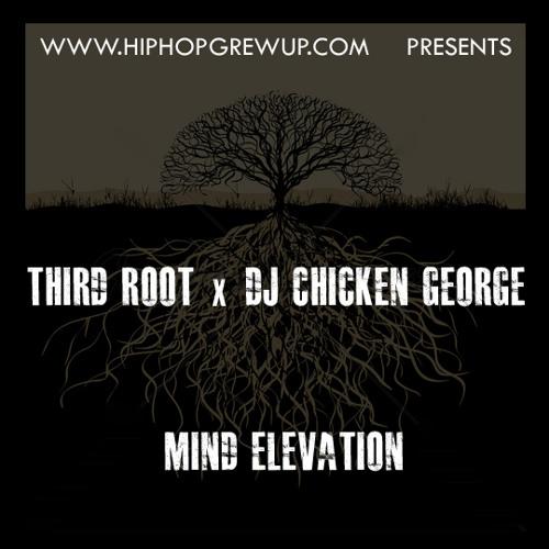 """Third Root x DJ Chicken George """"Winter In America"""""""