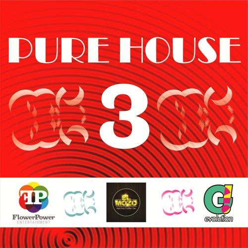 PURE HOUSE 3 (MAIKOL VENEK 2K 13)