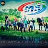 Hermosa Experiencia - Banda Sinaloense MS de Sergio Lizarraga
