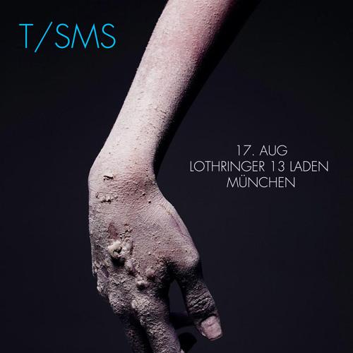 "T/SMS - ""TST 15"" (live, Lothringer 13 Laden, Munich, 17 Aug 2013)"