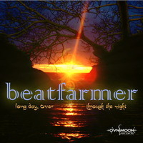 Through The Night Beatfarmer (Shankara Remix)
