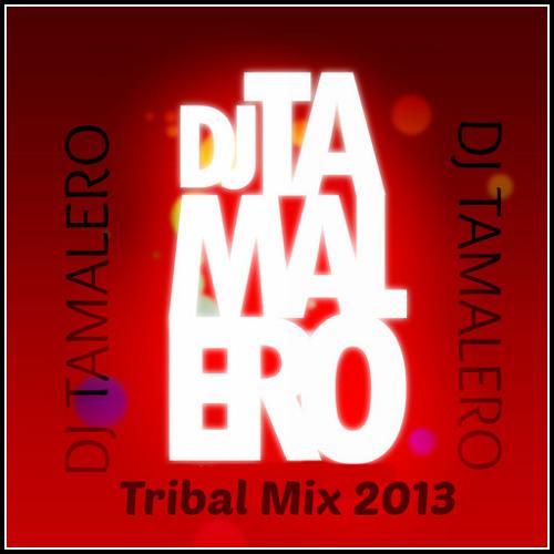 Dj Tamalero Tribal Mix August 2013 (No Liners/Drops)