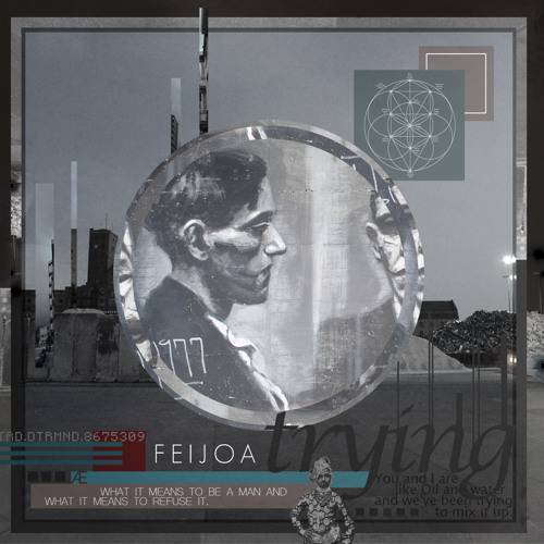 Feijoa - Trying