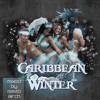 2013 Dancehall party mix – Newest Caribbean and Soca riddims / Caribbean Winter / Pavlo Birch