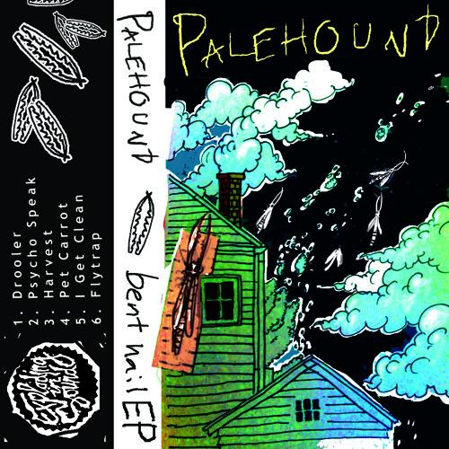 Palehound - Pet Carrot
