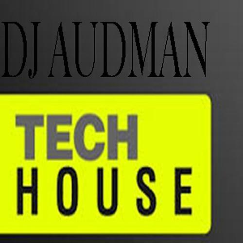 Audman69.0 (TechHouse)