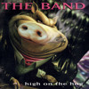 The Band - I Must Love You Too Much