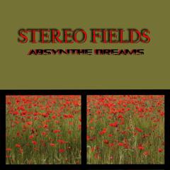 DiM by Stereo Fields