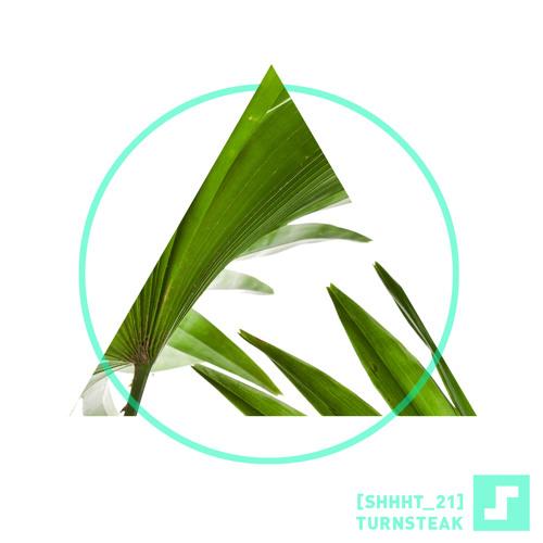 TuRnStEaK-SILENCED-shhht_21
