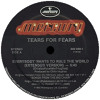 tear for fears - everybody wants to rule the world