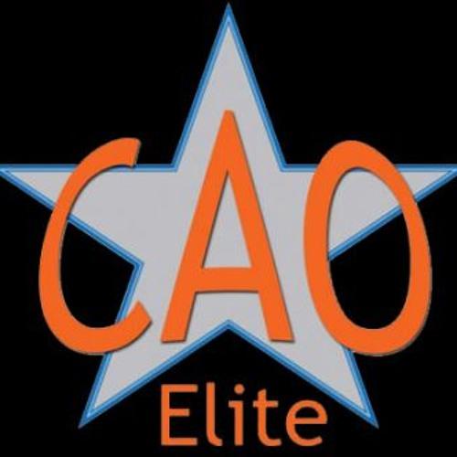 CAO Elite - Fierce Small Coed Level 2011 - 2012 NCA Dallas Remix
