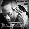 Shawn Jay - Black America