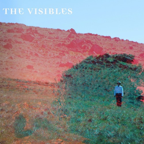 The Visibles - Trestled In Trees