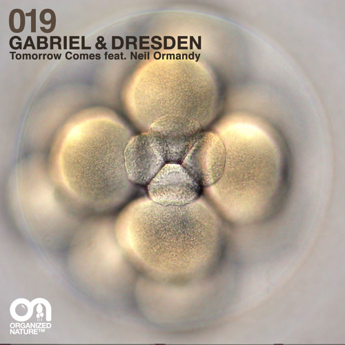 Tomorrow Comes (feat. Neil Ormandy) - Teaser