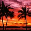 Ziggy Marley - Beach in Hawaii (JStylez Golden Sand Remix)