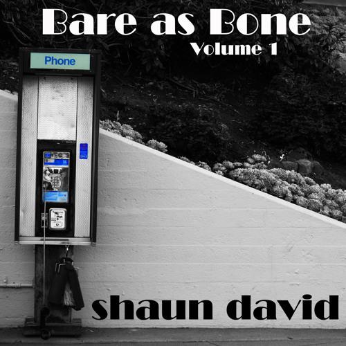 Submarines (acoustic) - Shaun David