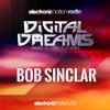 BOB SINCLAR - Minimix @ Digital Dreams Music Festival 13