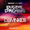 DAMN KIDS @ Digital Dreams Music Festival 13