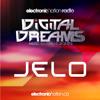 JELO @ Digital Dreams Music Festival 13