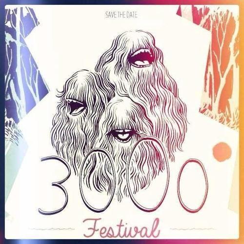 Funkwerkstatt @ 3000° Festival 2013