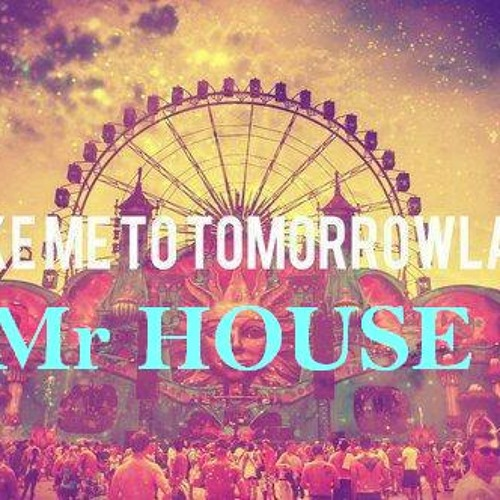 Tomorrowland 2013 - Mr HOUSE part 4