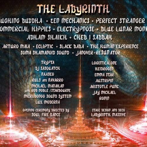 Live @ Shambhala Music Festival 2013, Labyrinth Stage (FREE D/L)