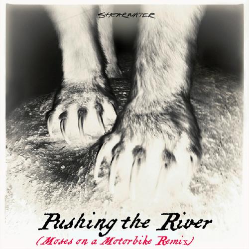 Shearwater - Pushing The River - (M.O.M. Remix)