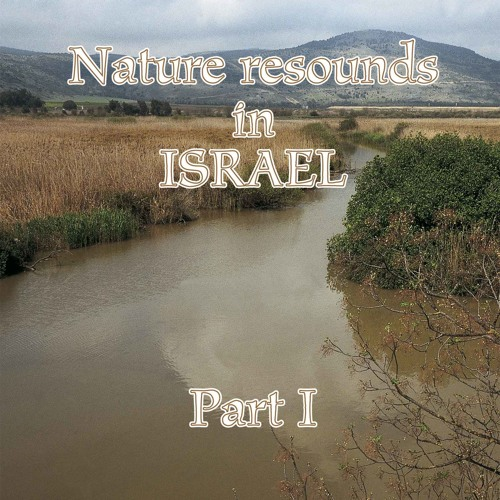 Nature resounds in Israel - Part I