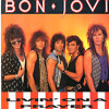 Bonjovi- Livin On A Prayer(covered by MannSik) mp3
