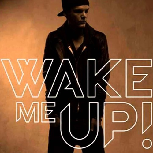Avicii & TJR - Wake Me Up (David Rojas Bootleg)