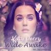 Katy Perry - Wide Awake(Xilent Remix)