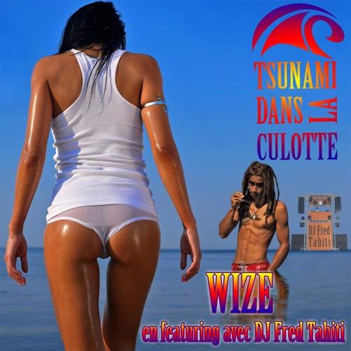 Wize & Dj Fred Tahiti - Tsunami Dans La Culotte (Original Version).mp3