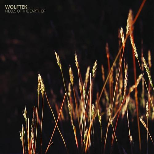 Wolftek - Loon