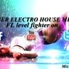 Summer Electro House Mix FL Vol.2