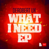 DeadBeat - What I Need - Mr Dubz RMX - Out 23rd Sept 2013
