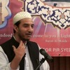 Mawlid A New Perspective - Syed Hasnain Raza Bukhari