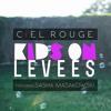 Kids On Levees