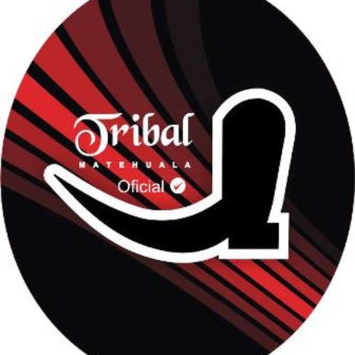 Tribal MaTeHuala - Dj Tamalero 2013 (Exclusive Mix)