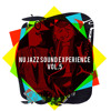Nu Jazz Sound Experience Vol.5 - The Swing Side of The Moon - FREE DOWNLOAD