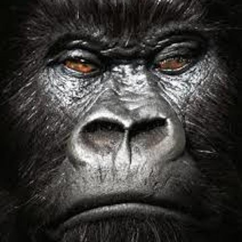 Gorillaz feel good inc Shorty bootleg re-vibe