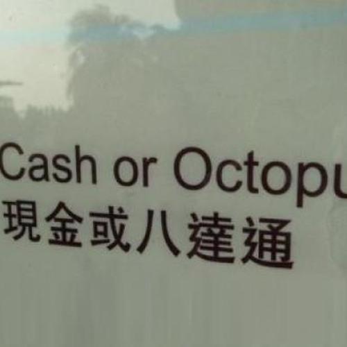 Cash Or Octopus
